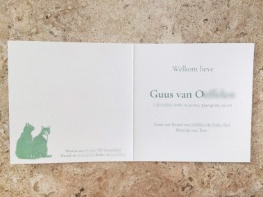 Custom Birth Announcement - Guus - total in marble interior-blurred details - Whispering Paper