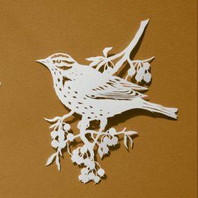 Papercut Illustrations for Libelle Magazine - Song Thrush - Whispering Paper