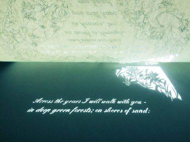 Papercut 25th Anniversary - Work in Progress - Shadowplay - Whispering Paper