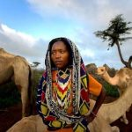 ISIOLO Land Adjudication | The Devil is in the Details