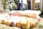 Quick Facts About The Narcotics Menace In Isiolo County And Tips On How To Combat It: