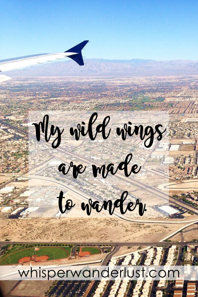 My wild wings are made to wander.