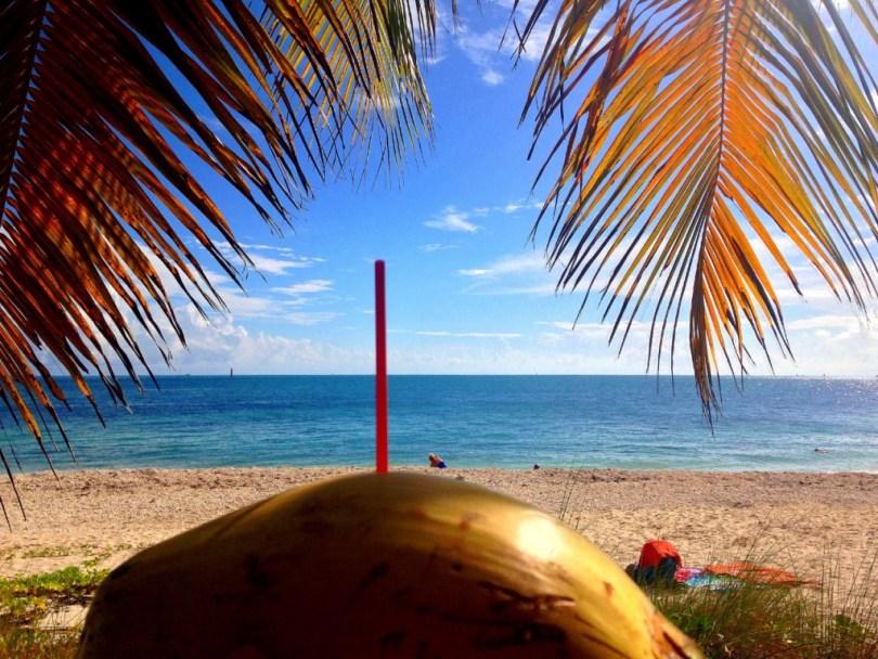Key West coconut beach