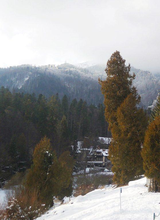 Mountain nice view sinaia