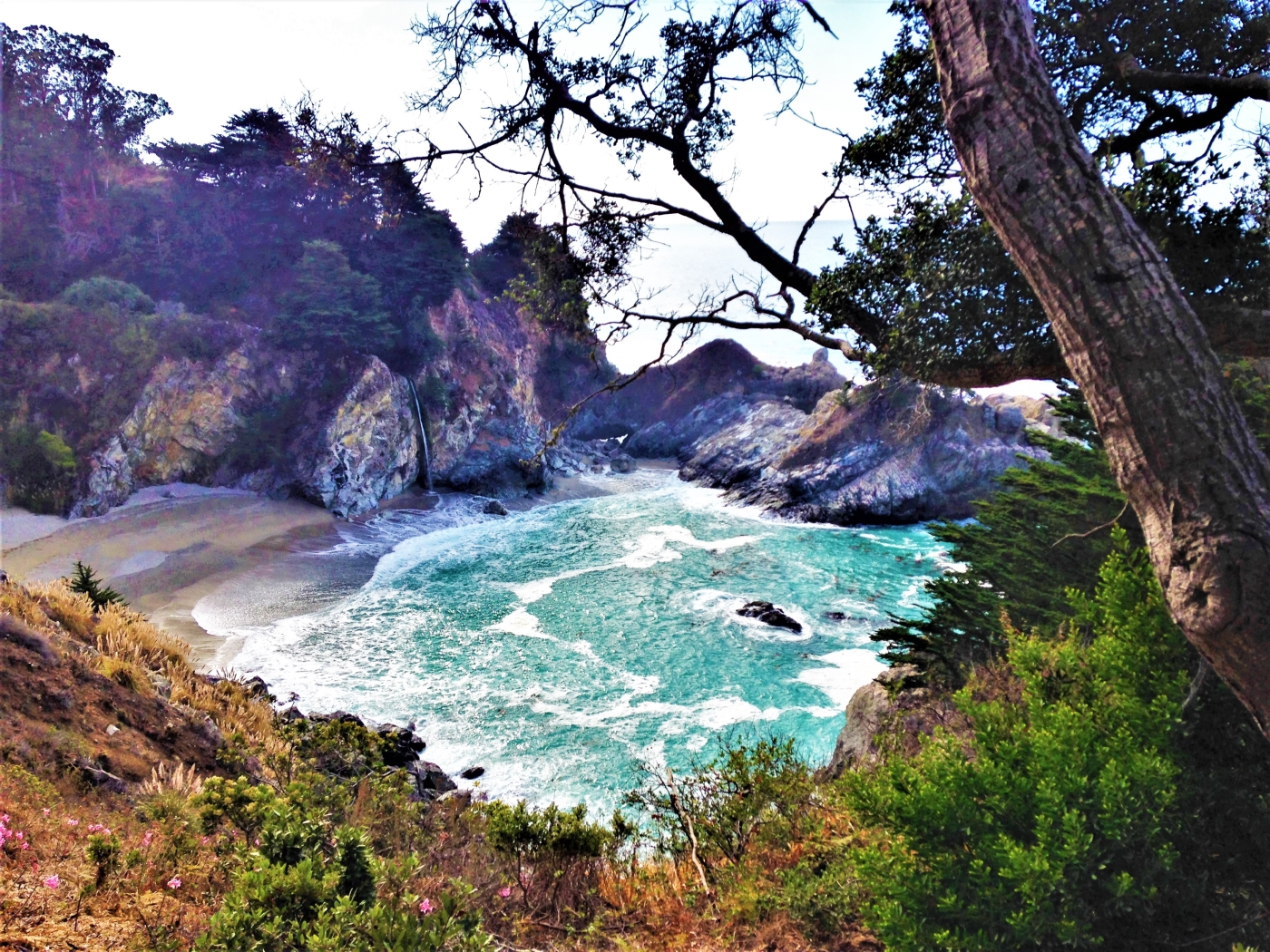 coast pacific highway road scenic along places stop america whisperwanderlust