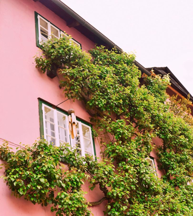 o zi in Hallstatt Austria