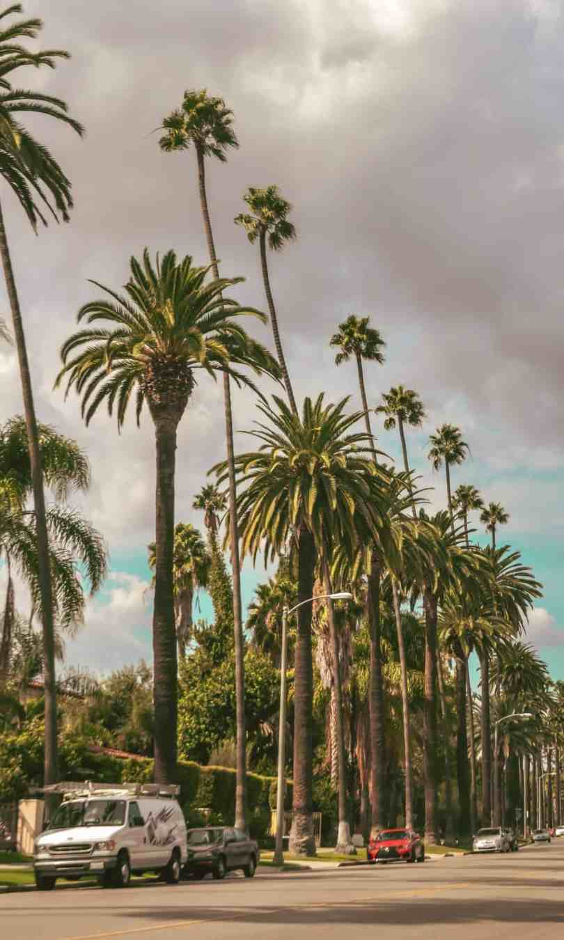 Beverly Hills Los Angeles 10 fun things to do in Los Angeles