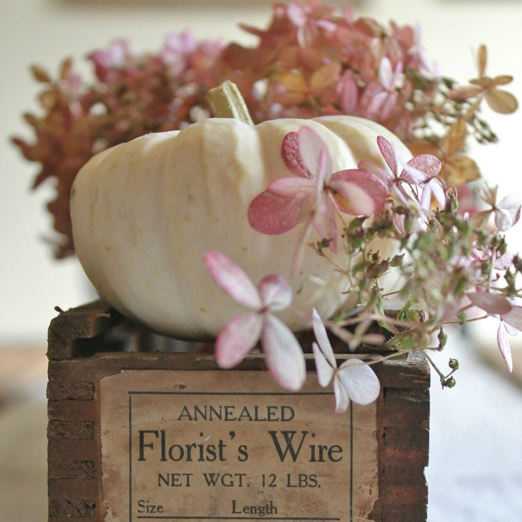 Fall Decor, Autumn Decor, white pumpkins, hydrangea, pumpkin and hydrangea
