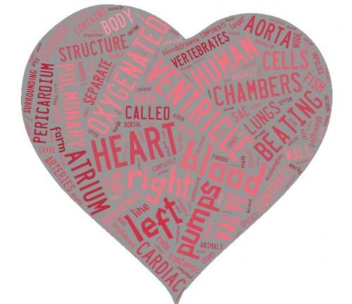 Heart Shaped Word Cloud