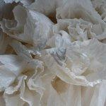 MASS MoCA – Material World: Sculpture toEnvironment