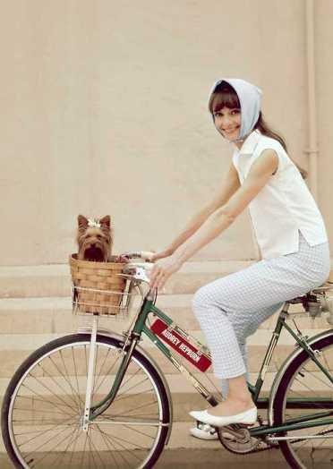 Audrey-Hepburn-bicycle