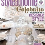 20 Below: Style at Home November Issue