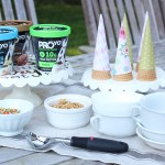 Guilt Free Ice Cream Party with ProYo