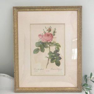 artwork- rose- J.C. Penney- vintage goods- floral art