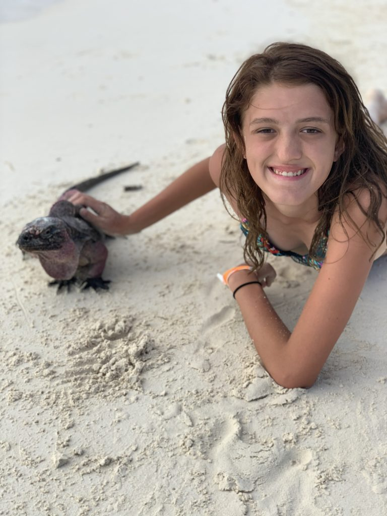 Exuma- Bahamas- swimming with the pigs- swimming pigs- vacation- family vacation- trip- beaches- Caribbean- Grand Isle Resort- Coco Plum Beach, ocean- beach swing- iguanas