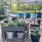 Garden Carts~ It's Not Too Late To Start!
