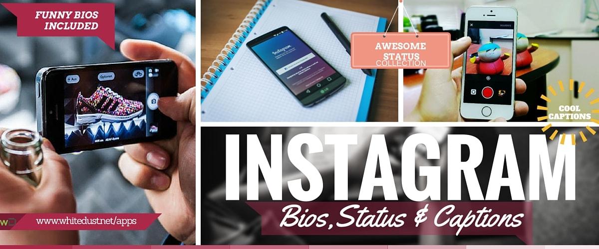 List of Funny Instagram Bios, Status & Ideas   WHITEDUST
