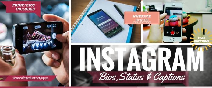 List of Funny Instagram Bios, Status & Ideas | WHITEDUST