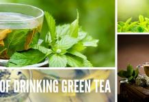 healthy benefits of drinking green tea