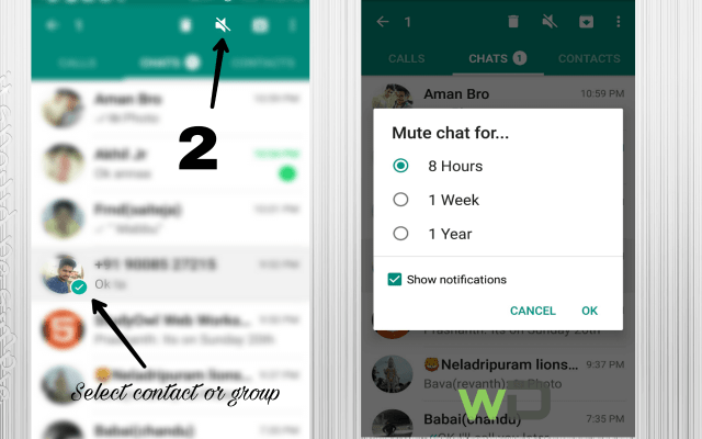 Learn how to mute conversation in whatsapp