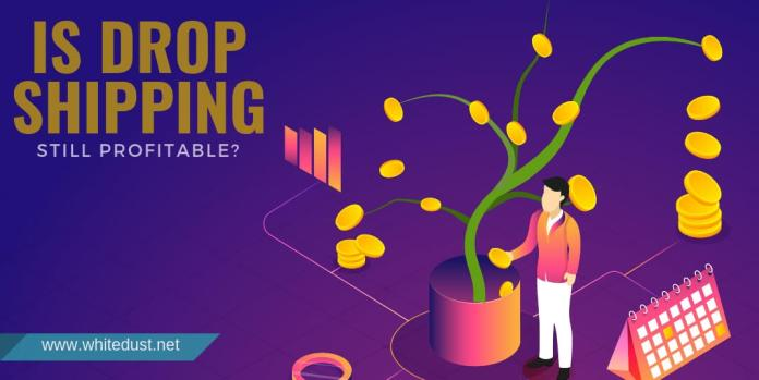 Is Drop Shipping Still Profitable?