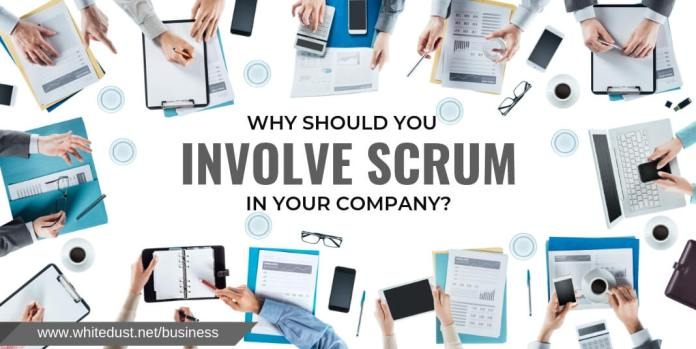 WHY SHOULD YOU INVOLVE SCRUM IN YOUR COMPANY?