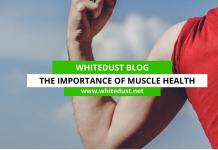The Importance of Muscle Health