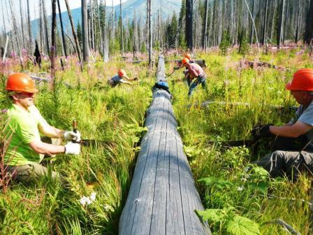 Boy Scout Troop #17 at Long Creek