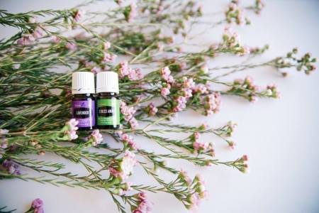 Essential Oils. Why Essential Oils Have Transfomed My Family Forever, Young Living