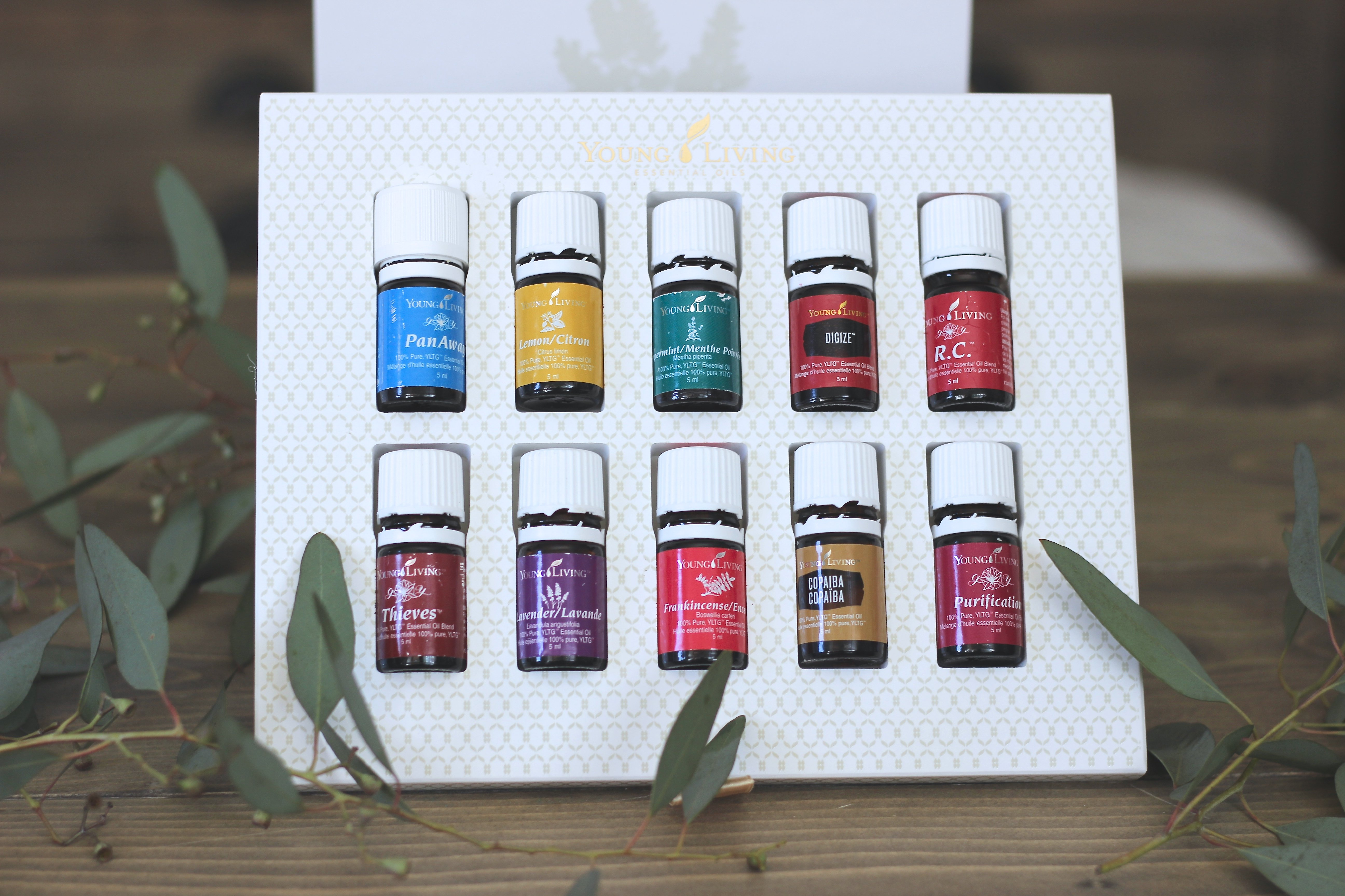 Essential Oils - Young Living, The Oils In The Premium Starter Kit, Why You Need to Switch Over now.