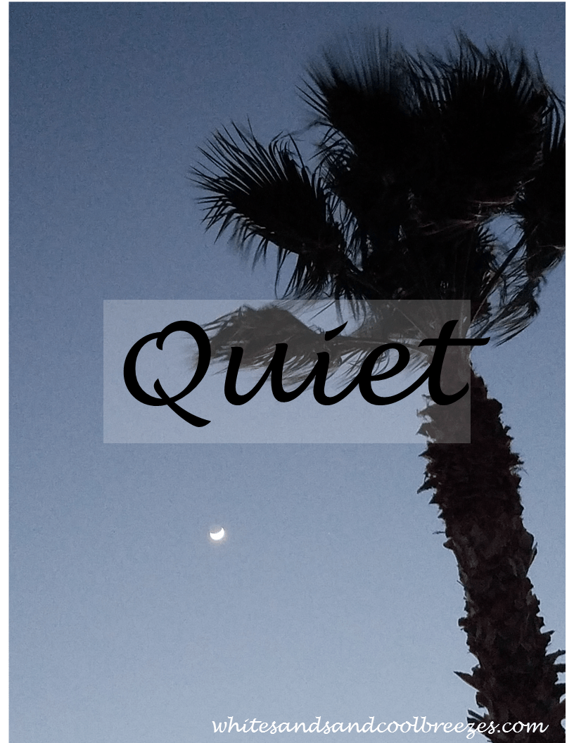 Quiet – Thought for the Every Day