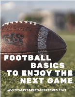 A football laying on a field with text overlay – Football basics to enjoy the next game.