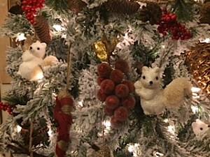 white squirrel tree_1284