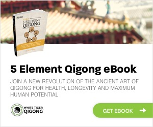 Affiliate Banners - 5 Element eBook