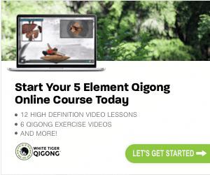 5 Element Online Course