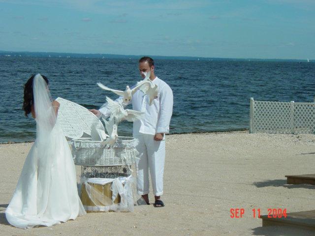 White Wedding Doves Dove Releases White Doves For