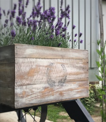 DIY box with lavender 2 260x300 - A DIY Project - Transforming a Vintage Box into a thing of Beauty