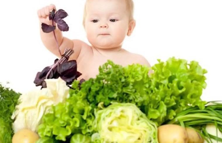 Vegan Parents Lose Their Baby 1