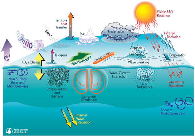 Depiction of processes operating at the air-sea interface and in the upper ocean mixed layer