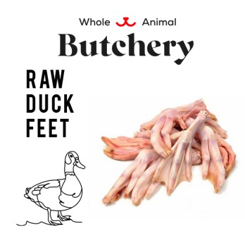 Raw Duck Feet