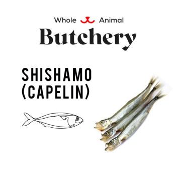 Japanese Shishamo (Capelin)