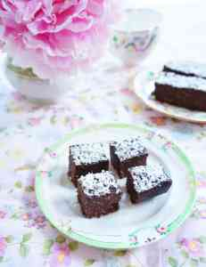 Chocolate-Coconut-Fudge-1-700x911