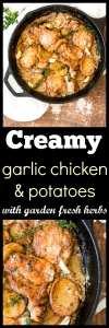 One Pan Creamy Garlic Chicken with Potatoes and Fresh Garden Herbs