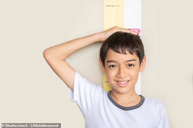 Children on a vegan diet were three centimeters shorter on average.  They also had four to six percent lower bone mineral content and were more than three times more likely to be vitamin B-12 deficient than omnivores (stock image)