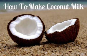 Make Organic Coconut Milk For Less  $ Than Store Bought
