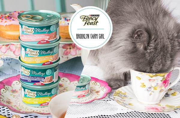 Free Sample of Fancy Feast Medleys Wet Cat Food | Whole Mom