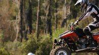 ATV, 4-Wheeler, Powersport Vehicle in Forest