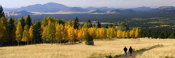 gorgeous fall colors in flagstaff, az for rv travelers