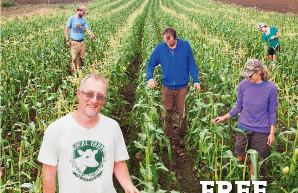 Growing seeds, growing business, growing community: a profile of Tom Stearns