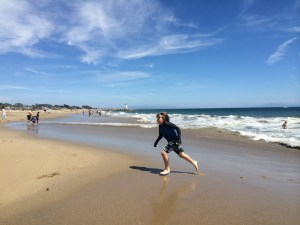 santa cruz seabright beach